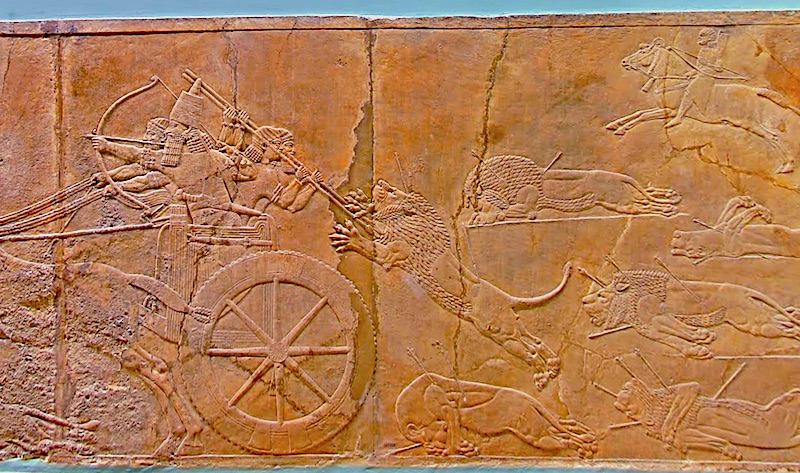 A section of The Lion Hunt of Ashurbanipal, British Museum